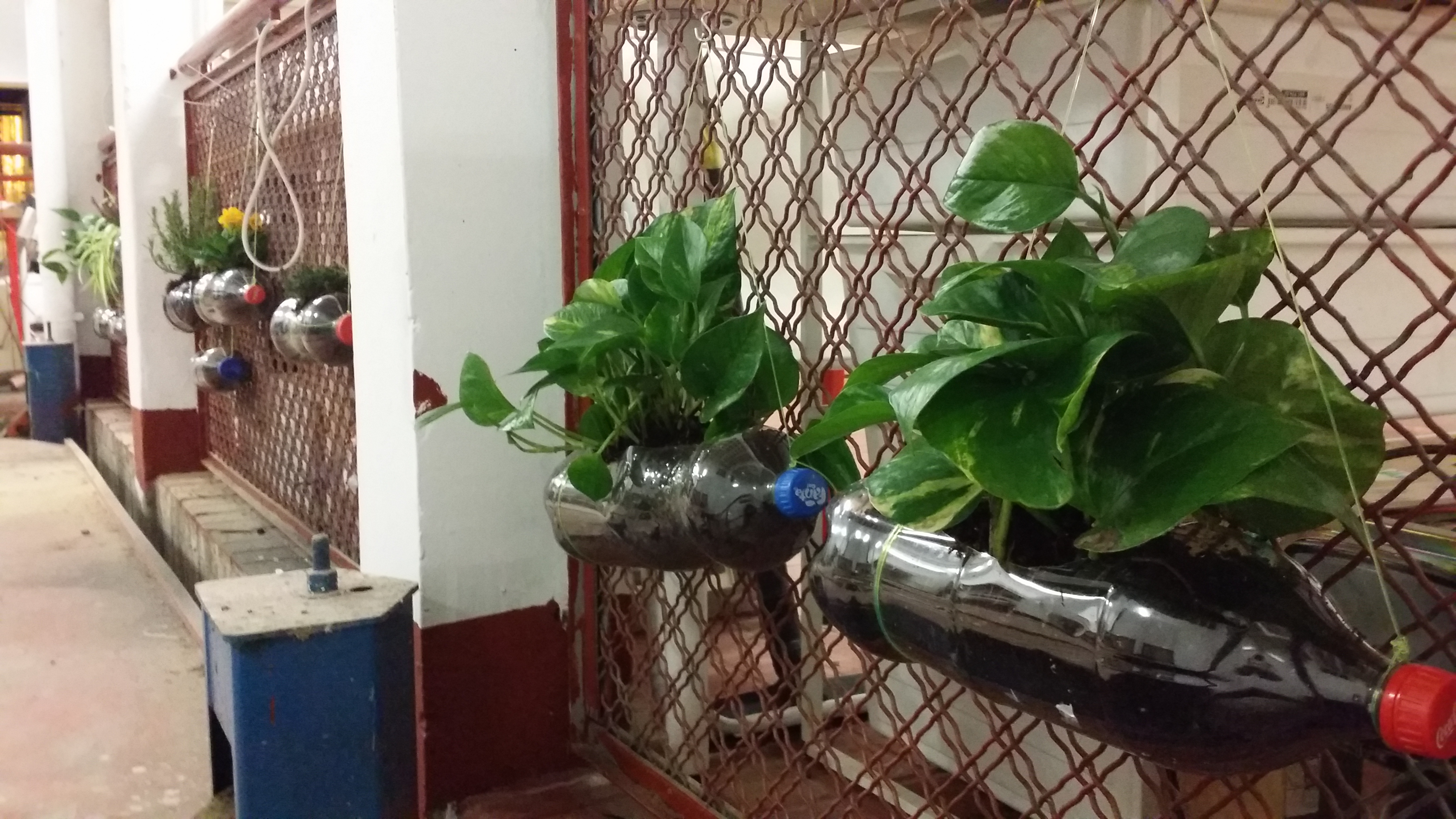 Mejora del taller de herramientas y un nuevo jardín colgante interior